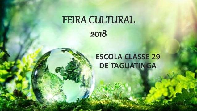 FEIRA CULTURAL 2018 ESCOLA CLASSE 29 DE TAGUATINGA