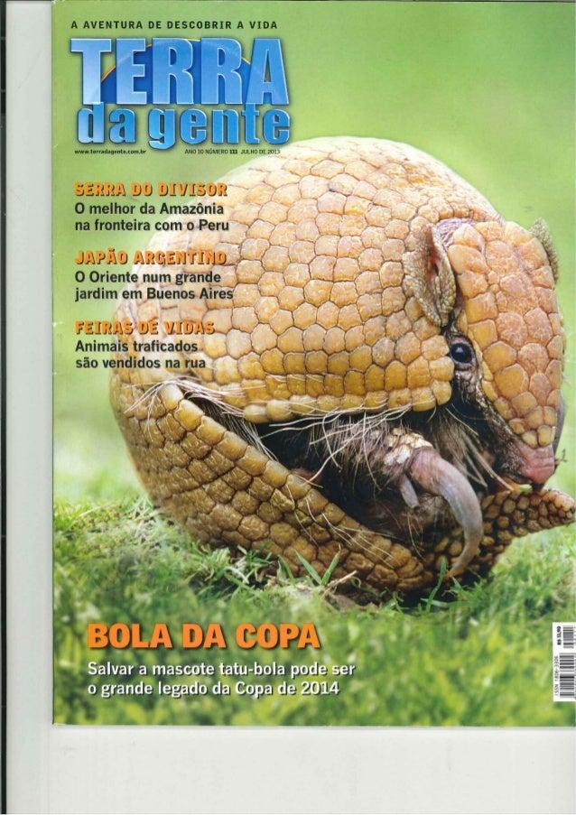 Tráfico no varejo - o tráfico de animais em feiras no Brasil