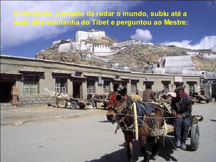 O discípulo, cansado de rodar o mundo, subiu até a  mais alta montanha do Tibet e perguntou ao Mestre: