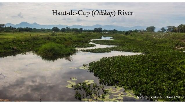 Haut-de-Cap (Odikap) River Photo by Crystal A. Felima (2015)