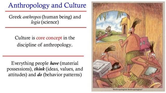 Perspectives, Approaches, and Methodology •Holistic Approach •Emic (insider) and Etic (outsider) Perspective •Cultural Rel...