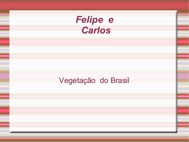 Felipe eCarlosVegetação do Brasil