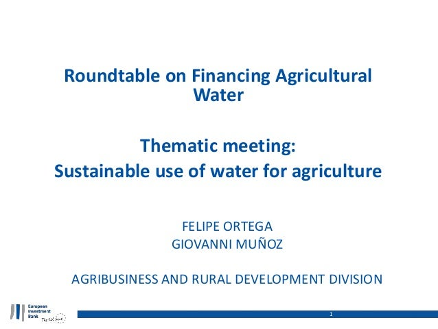 Roundtable on Financing Agricultural Water Thematic meeting: Sustainable use of water for agriculture 1 FELIPE ORTEGA GIOV...