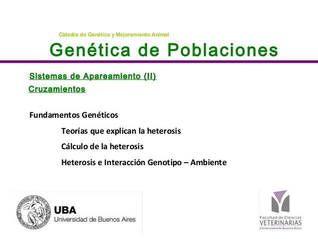 Genética de Poblaciones Cátedra de Genética y Mejoramiento Animal Sistemas de Apareamiento (II) Cruzamientos Fundamentos G...