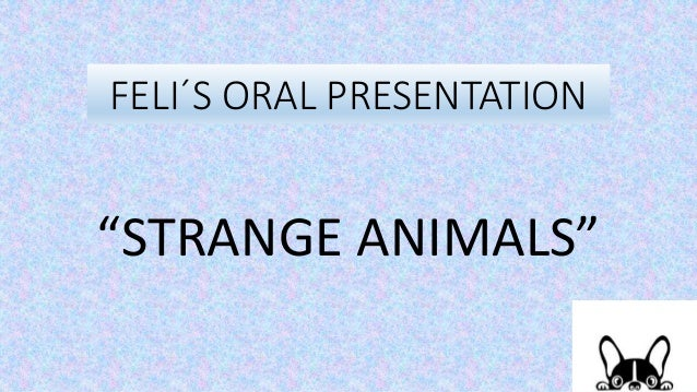 "FELI´S ORAL PRESENTATION ""STRANGE ANIMALS"""