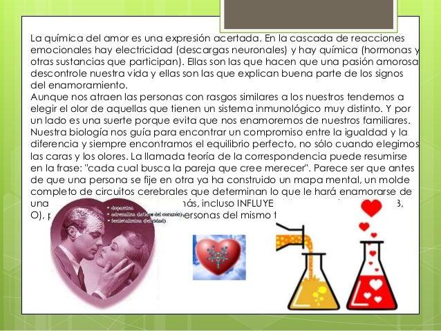La quimica del amor y lo otro