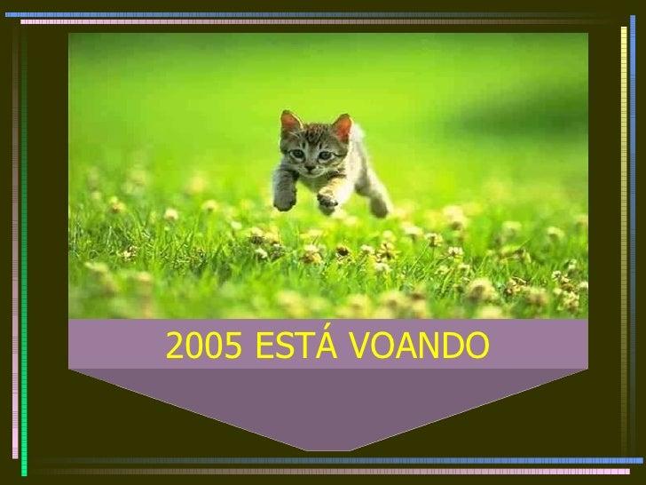 2005 ESTÁ VOANDO