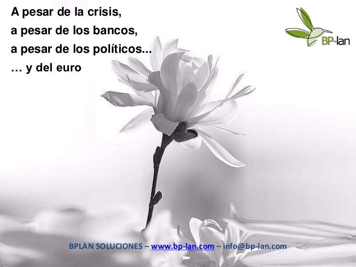 A pesar de la crisis,a pesar de los bancos,a pesar de los políticos...… y del euro           BPLAN SOLUCIONES – www.bp-lan...