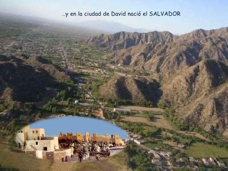 … y en la ciudad de David nació el SALVADOR