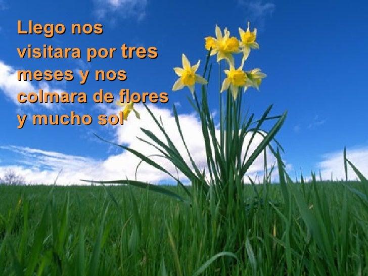 Feliz primavera ,  a disfrutar..... Slide 3