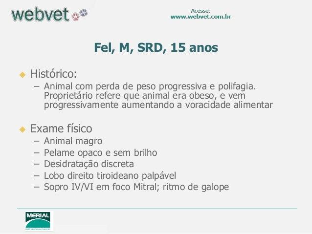 Fel, M, SRD, 15 anos   Histórico:  – Animal com perda de peso progressiva e polifagia. Proprietário refere que animal era...