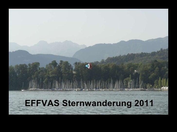 EFFVAS Sternwanderung 2011