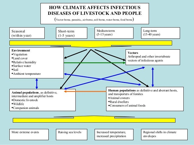 effects of host and vector diversity on disease dynamics Hosts as ecological traps for the vector of lyme disease  2008 effects of host diversity on disease dynamics  2003 the ecology of infectious disease: effects .