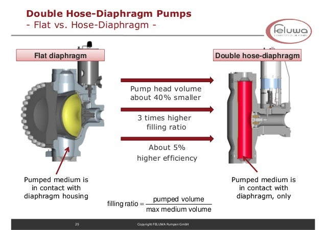 Feluwa applied bionics in pumps for hydrotranport process ref 25 double hose diaphragm pumps ccuart Gallery
