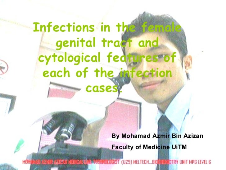 Infections in the female genital tract and cytological features of each of the infection cases.  By Mohamad Azmir Bin Aziz...