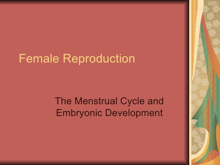 Female Reproduction The Menstrual Cycle and Embryonic Development