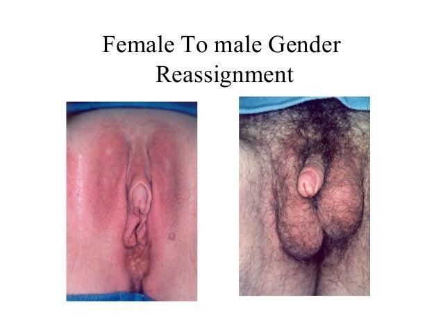 Female to female sex photos