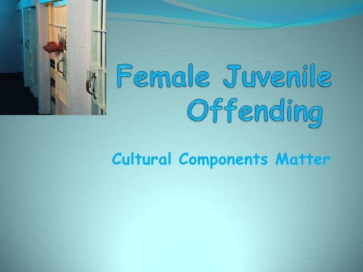 Cultural Components Matter