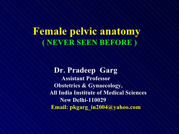 Female pelvic anatomy  ( NEVER SEEN BEFORE ) Dr. Pradeep  Garg   Assistant Professor   Obstetrics & Gynaecology, All India...