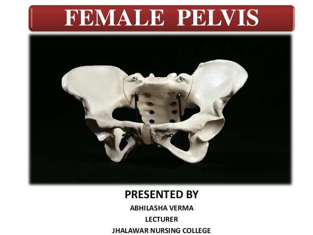 FEMALE PELVIS PRESENTED BY ABHILASHA VERMA LECTURER JHALAWAR NURSING COLLEGE