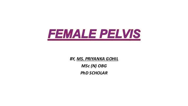 BY, MS. PRIYANKA GOHIL MSc (N) OBG PhD SCHOLAR