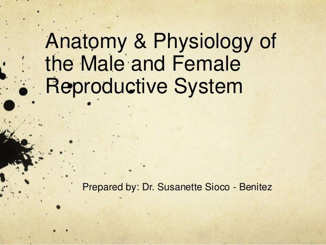 Anatomy & Physiology of the Male and Female Reproductive System Prepared by: Dr. Susanette Sioco - Benitez