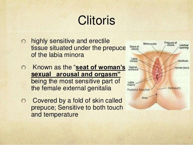 Womens most sensitive point clitoris