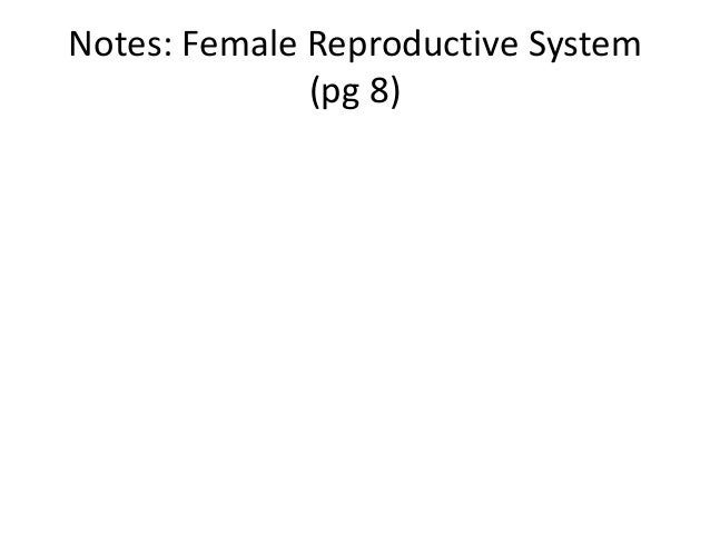 Notes: Female Reproductive System(pg 8)