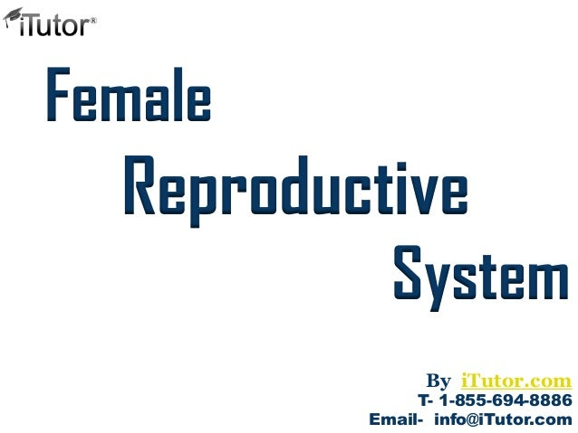 System Female T- 1-855-694-8886 Email- info@iTutor.com By iTutor.com Reproductive
