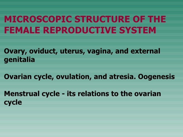 MICROSCOPIC STRUCTURE OF THE FEMALE REPRODUCTIVE SYSTEM Ovary, oviduct, uterus, vagina, and external genitalia  Ovarian cy...