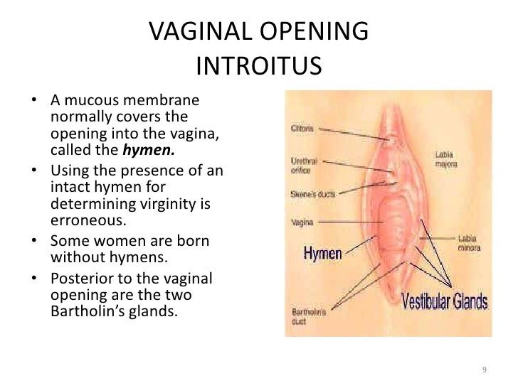 Indication of virginity during sexual intercourse