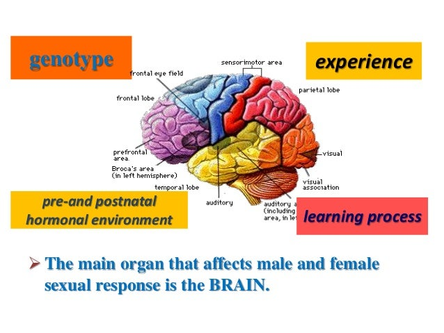 Sexual dysfunction in males and females