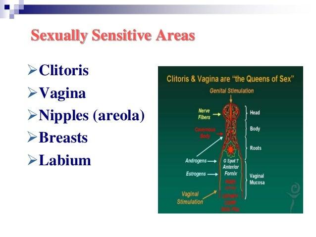 Sexually sensitive part body of woman