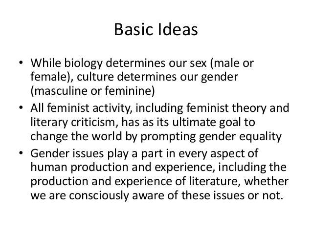 literary criticism feminist