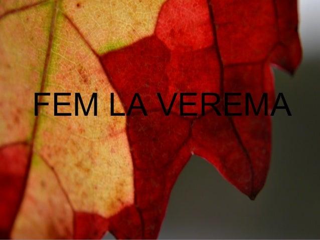 Álbum de fotografías por P5B FEM LA VEREMA