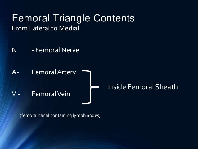 femoral hernia presentation for cbl, Muscles