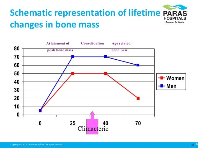 peak bone mass and its relationship to osteoporosis diet