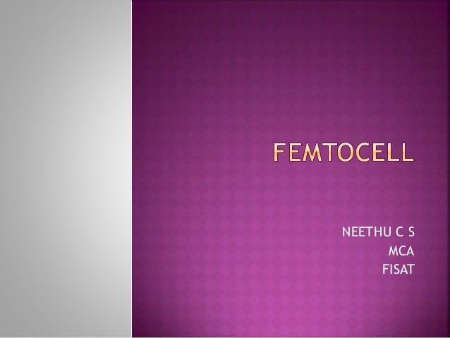 NEETHU C S MCA FISAT