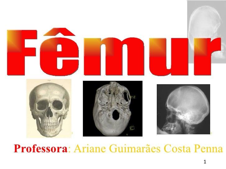 <ul><ul><li>Professora : Ariane Guimarães Costa Penna </li></ul></ul>Fêmur 1 3 2