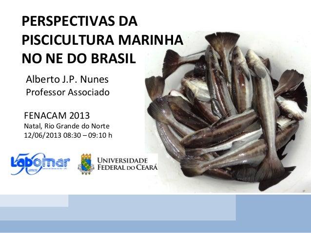 PERSPECTIVAS DA PISCICULTURA MARINHA NO NE DO BRASIL Alberto J.P. Nunes Professor Associado FENACAM 2013 Natal, Rio Grande...
