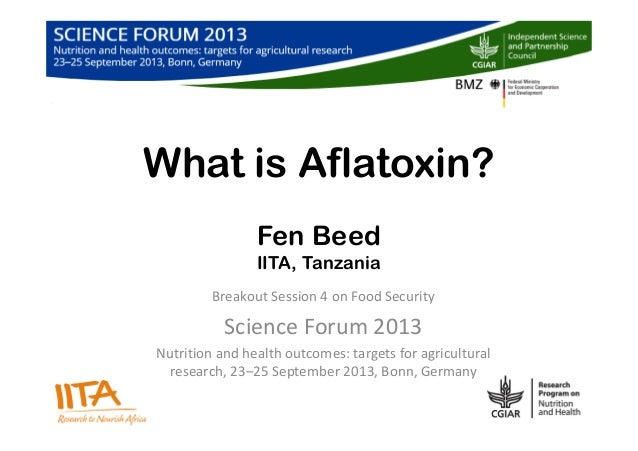 What is Aflatoxin? Fen Beed IITA, Tanzania Breakout Session 4 on Food Security Science Forum 2013 Nutrition and health out...
