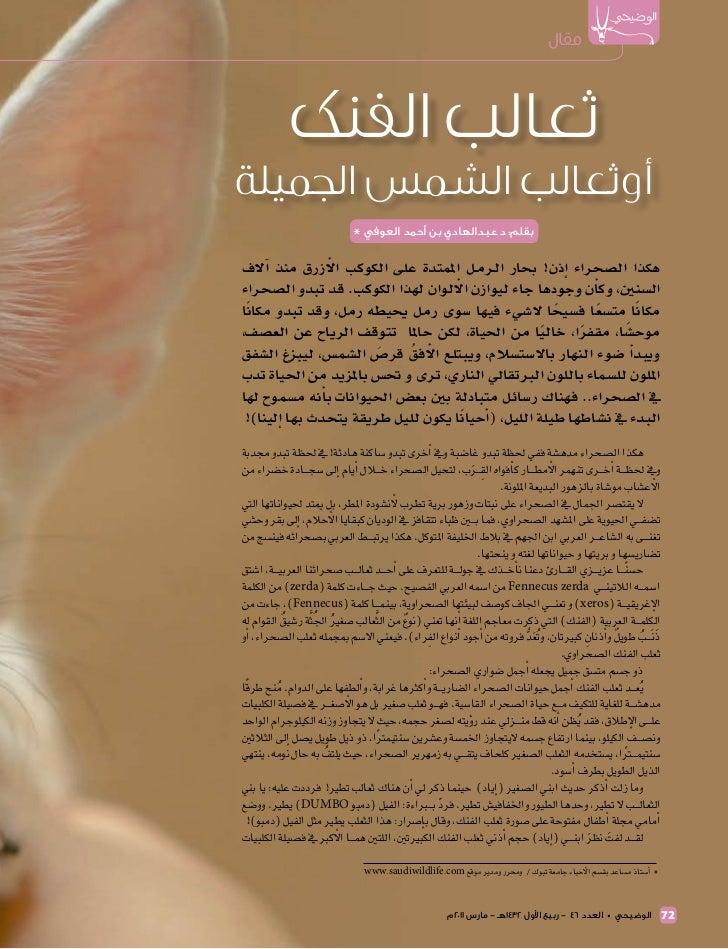 مقال             ثعالب الفنكأوثعالب الشمس الجميلة                               بقلم: د.عبدالهادي بن أحمد العوفي *...