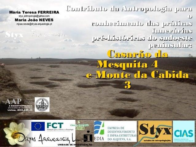 Maria Teresa FERREIRA                                               Contributo da Antropologia para           styx_antropo...