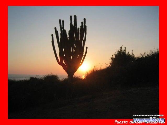Puesta de Sol Mazunte