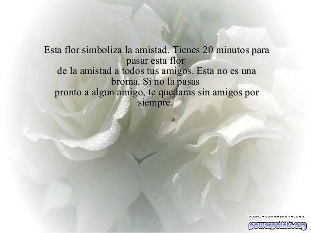 Ria Slides Esta flor simboliza la amistad.Esta flor simboliza la amistad. Tienes 20 minutos paraTienes 20 minutos para pas...