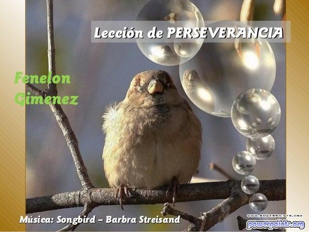 Lección de PERSEVERANCIAFenelonGimenezMúsica: Songbird – Barbra Streisand