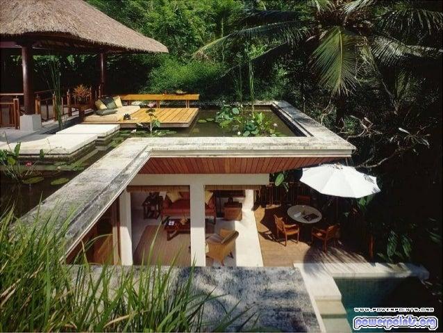 Fenelon turismo en la_jungla-8414-8414 Slide 3