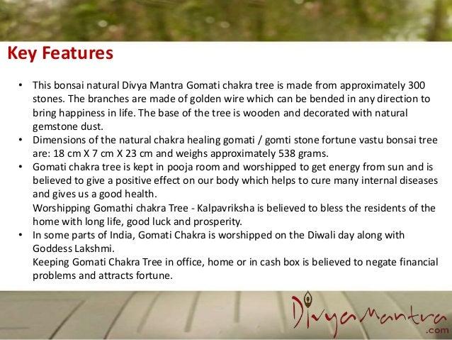 Feng shui natural gomati chakra healing gem stone bonsai fortune vast…