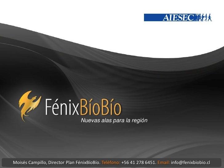 Nuevas alas para la regiónMoisés Campillo, Director Plan FénixBíoBío. Teléfono: +56 41 278 6451. Email: info@fenixbiobio.cl