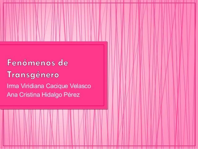 Irma Viridiana Cacique Velasco Ana Cristina Hidalgo Pérez